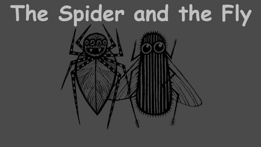 Spyder and the fly